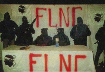 FLNC3.jpg