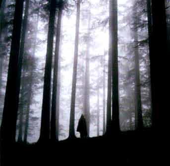bosco-Atro.jpg