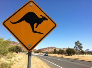 segnale-canguro
