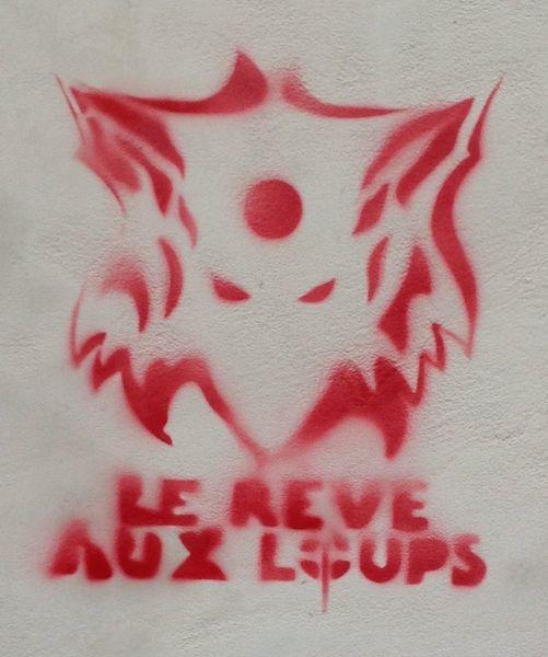 reve_aux_loups copia