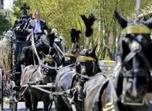funerali 1