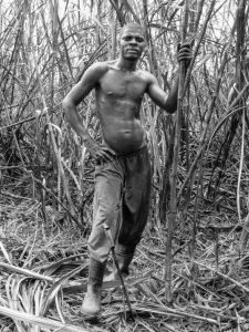 Come schiavi in libertà foto