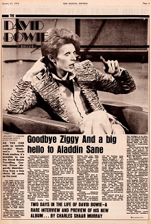 goodbye-ziggy